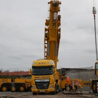 A picture of a variety of NMT cranes