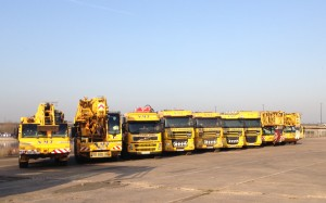 Some of NMT's cranes