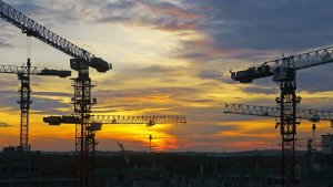 image of cranes during the sunset